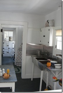 Kitchen and Butler's Pantry